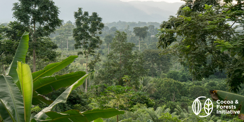 CEMOI publishes his CFI 2020 report. The Cocoa and Forests Initiative: Collective action to stop cocoa-related deforestation